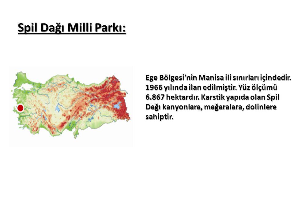 Spil Dağı Milli Parkı: Ege Bölgesi'nin Manisa ili sınırları içindedir. 1966 yılında ilan edilmiştir. Yüz ölçümü 6.867 hektardır. Karstik yapıda olan S
