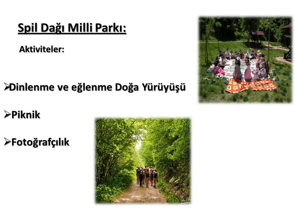 Spil Dağı Milli Parkı: Kaynak Değerleri: Spil Dağı Milli Parkı,6867 ha'lık alanının içinde Ayvacık Köyü bulunmaktadır.