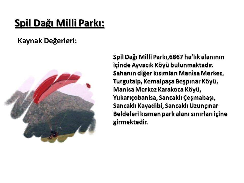Spil Dağı Milli Parkı: Kaynak Değerleri: Spil Dağı Milli Parkı,6867 ha'lık alanının içinde Ayvacık Köyü bulunmaktadır. Sahanın diğer kısımları Manisa