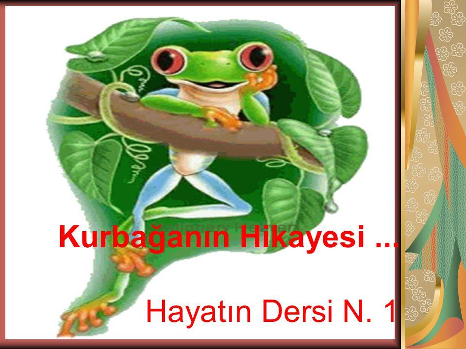 Kurbağanın Hikayesi... Hayatın Dersi N. 1