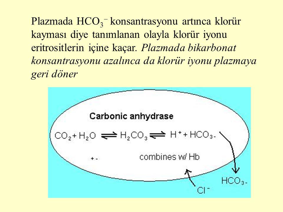 Plazmada HCO 3  konsantrasyonu artınca klorür kayması diye tanımlanan olayla klorür iyonu eritrositlerin içine kaçar. Plazmada bikarbonat konsantrasy
