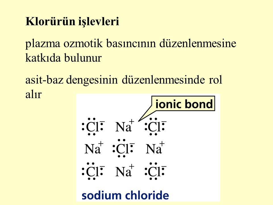 Klorürün işlevleri plazma ozmotik basıncının düzenlenmesine katkıda bulunur asit-baz dengesinin düzenlenmesinde rol alır