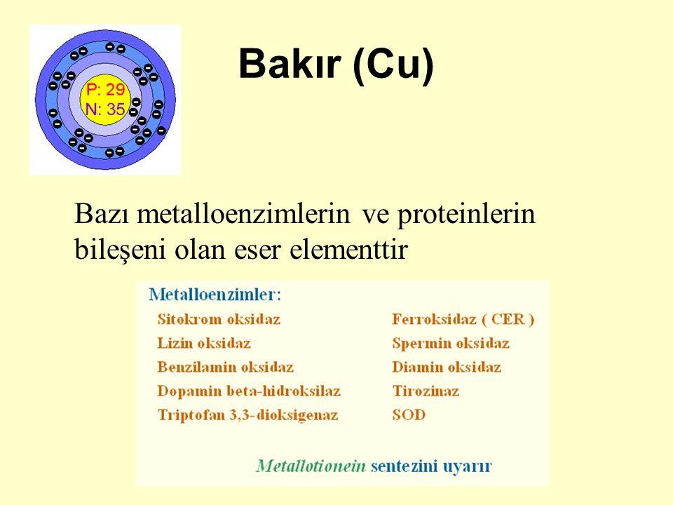 Bakır (Cu) Bazı metalloenzimlerin ve proteinlerin bileşeni olan eser elementtir