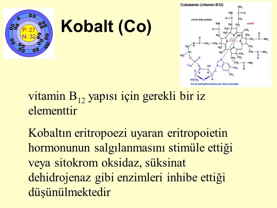 Kobalt (Co) vitamin B 12 yapısı için gerekli bir iz elementtir Kobaltın eritropoezi uyaran eritropoietin hormonunun salgılanmasını stimüle ettiği veya