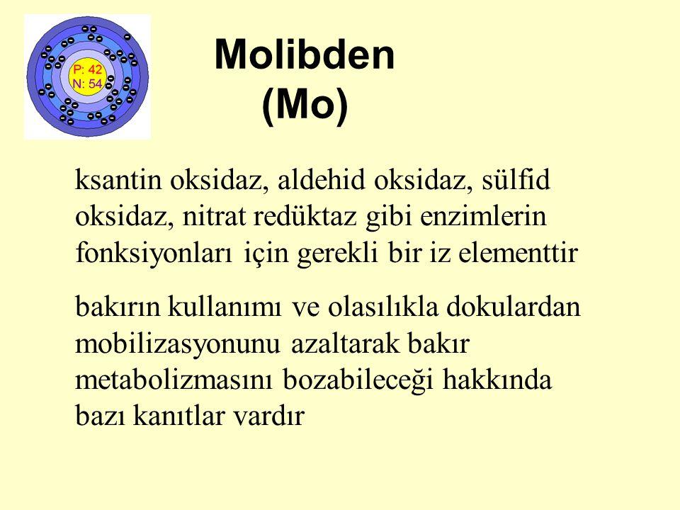 Molibden (Mo) ksantin oksidaz, aldehid oksidaz, sülfid oksidaz, nitrat redüktaz gibi enzimlerin fonksiyonları için gerekli bir iz elementtir bakırın k
