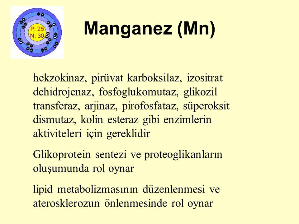 Manganez (Mn) hekzokinaz, pirüvat karboksilaz, izositrat dehidrojenaz, fosfoglukomutaz, glikozil transferaz, arjinaz, pirofosfataz, süperoksit dismuta