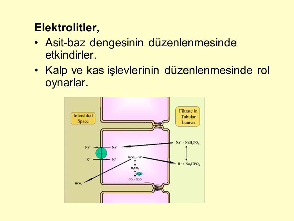 Manganez (Mn) hekzokinaz, pirüvat karboksilaz, izositrat dehidrojenaz, fosfoglukomutaz, glikozil transferaz, arjinaz, pirofosfataz, süperoksit dismutaz, kolin esteraz gibi enzimlerin aktiviteleri için gereklidir Glikoprotein sentezi ve proteoglikanların oluşumunda rol oynar lipid metabolizmasının düzenlenmesi ve aterosklerozun önlenmesinde rol oynar
