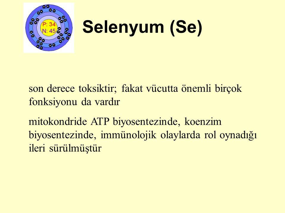 Selenyum (Se) son derece toksiktir; fakat vücutta önemli birçok fonksiyonu da vardır mitokondride ATP biyosentezinde, koenzim biyosentezinde, immünolo