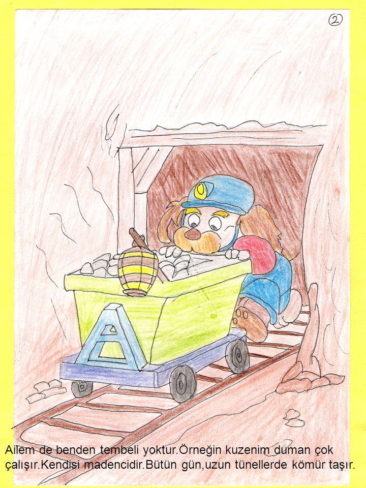 Ailem de benden tembeli yoktur.Örneğin kuzenim duman çok çalışır.Kendisi madencidir.Bütün gün,uzun tünellerde kömür taşır.