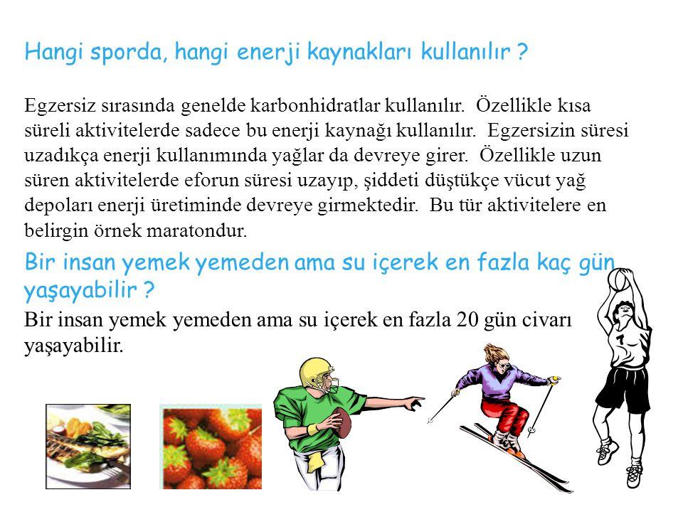 Egzersiz sırasında genelde karbonhidratlar kullanılır.
