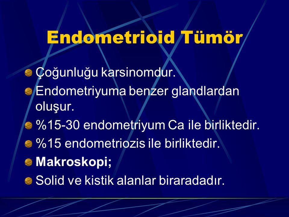 Endometrioid Tümör Çoğunluğu karsinomdur. Endometriyuma benzer glandlardan oluşur. %15-30 endometriyum Ca ile birliktedir. %15 endometriozis ile birli