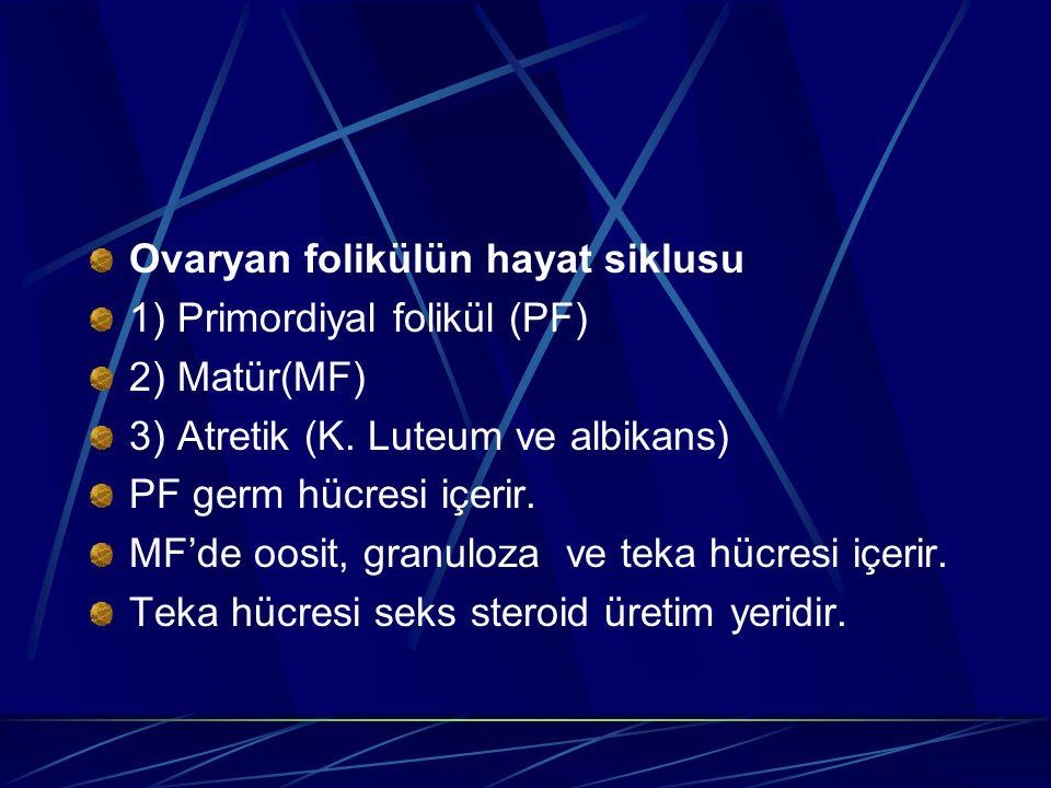 Ovaryan folikülün hayat siklusu 1) Primordiyal folikül (PF) 2) Matür(MF) 3) Atretik (K. Luteum ve albikans) PF germ hücresi içerir. MF'de oosit, granu