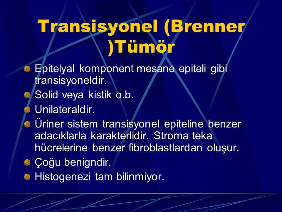 Transisyonel (Brenner )Tümör Epitelyal komponent mesane epiteli gibi transisyoneldir. Solid veya kistik o.b. Unilateraldir. Üriner sistem transisyonel