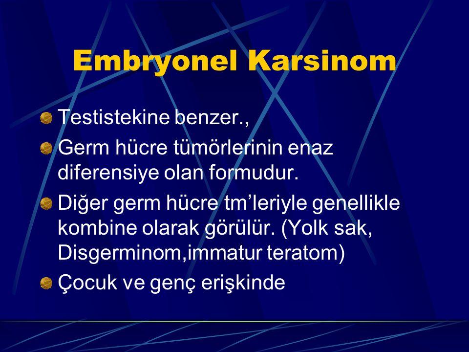 Embryonel Karsinom Testistekine benzer., Germ hücre tümörlerinin enaz diferensiye olan formudur. Diğer germ hücre tm'leriyle genellikle kombine olarak