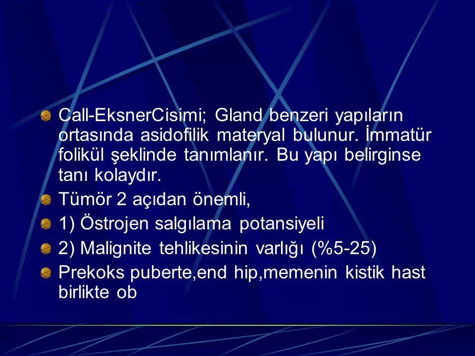 Call-EksnerCisimi; Gland benzeri yapıların ortasında asidofilik materyal bulunur. İmmatür folikül şeklinde tanımlanır. Bu yapı belirginse tanı kolaydı