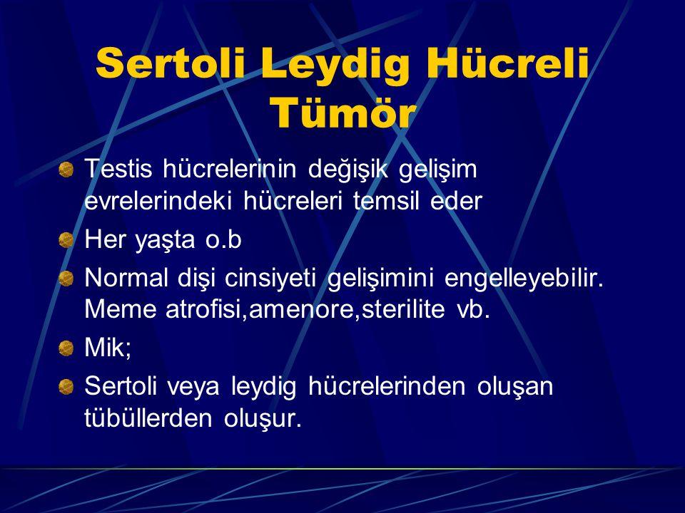 Sertoli Leydig Hücreli Tümör Testis hücrelerinin değişik gelişim evrelerindeki hücreleri temsil eder Her yaşta o.b Normal dişi cinsiyeti gelişimini en