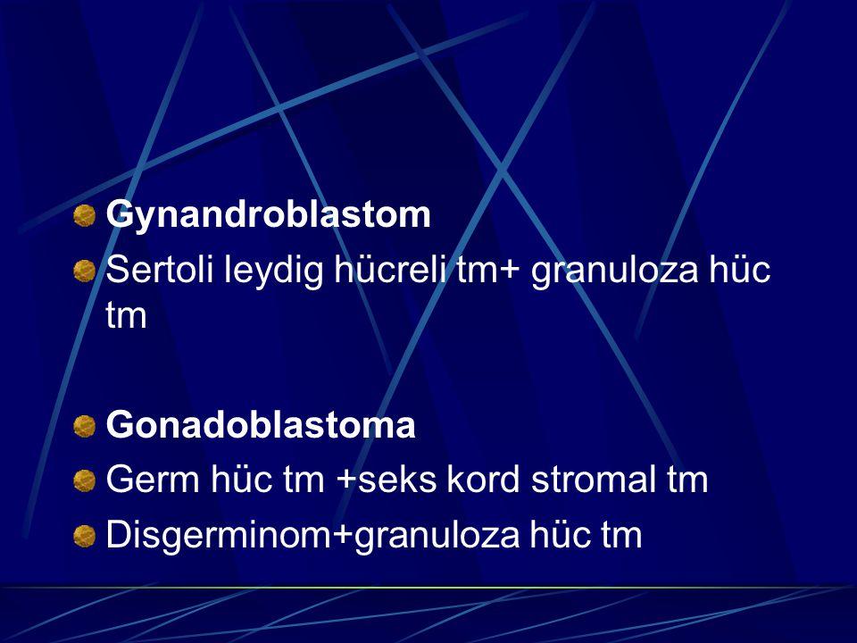 Gynandroblastom Sertoli leydig hücreli tm+ granuloza hüc tm Gonadoblastoma Germ hüc tm +seks kord stromal tm Disgerminom+granuloza hüc tm