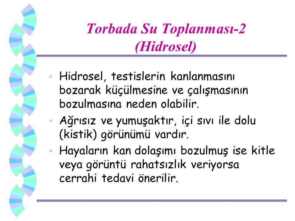 Torbada Su Toplanması-2 (Hidrosel) w Hidrosel, testislerin kanlanmasını bozarak küçülmesine ve çalışmasının bozulmasına neden olabilir. w Ağrısız ve y