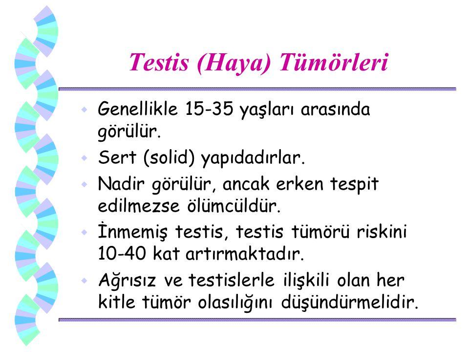 Testis (Haya) Tümörleri w Genellikle 15-35 yaşları arasında görülür. w Sert (solid) yapıdadırlar. w Nadir görülür, ancak erken tespit edilmezse ölümcü