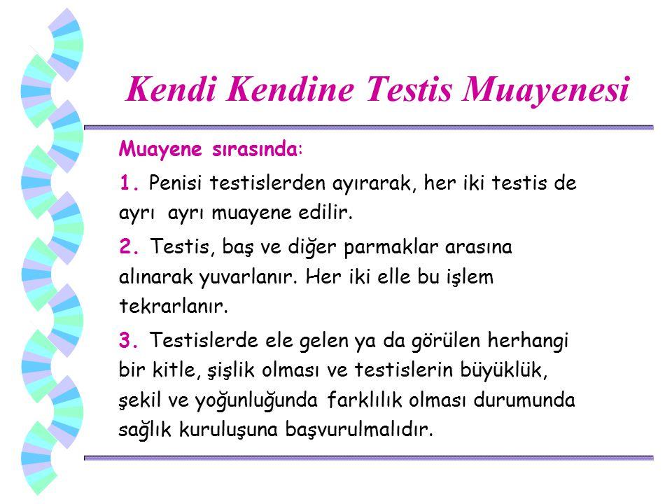 Kendi Kendine Testis Muayenesi Muayene sırasında: 1. Penisi testislerden ayırarak, her iki testis de ayrı ayrı muayene edilir. 2. Testis, baş ve diğer