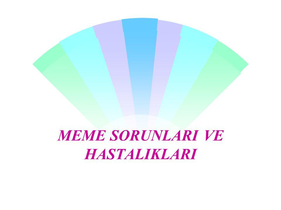 MEME SORUNLARI VE HASTALIKLARI