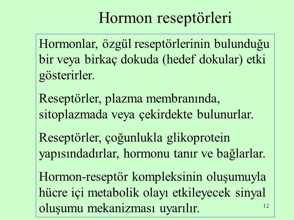 12 Hormon reseptörleri Hormonlar, özgül reseptörlerinin bulunduğu bir veya birkaç dokuda (hedef dokular) etki gösterirler. Reseptörler, plazma membran