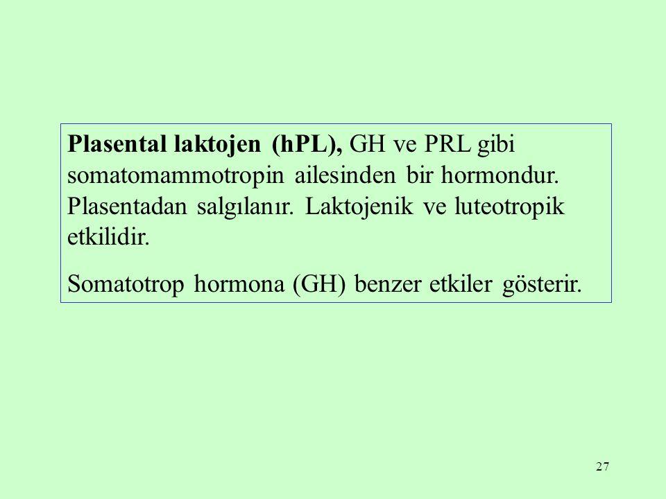 27 Plasental laktojen (hPL), GH ve PRL gibi somatomammotropin ailesinden bir hormondur. Plasentadan salgılanır. Laktojenik ve luteotropik etkilidir. S