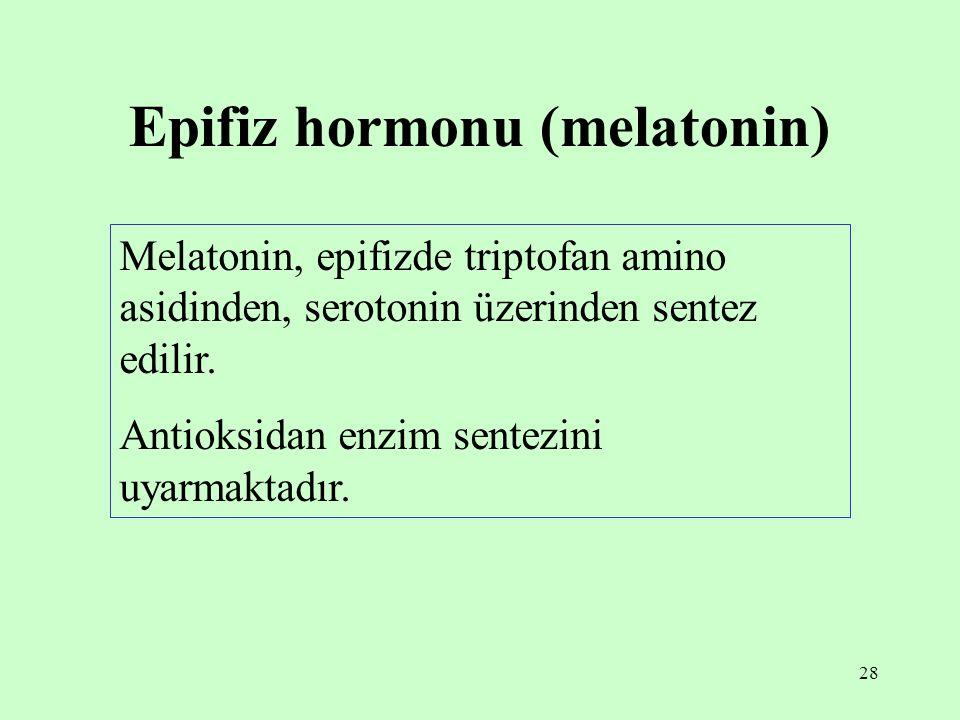 28 Epifiz hormonu (melatonin) Melatonin, epifizde triptofan amino asidinden, serotonin üzerinden sentez edilir. Antioksidan enzim sentezini uyarmaktad