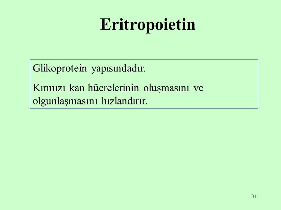31 Eritropoietin Glikoprotein yapısındadır. Kırmızı kan hücrelerinin oluşmasını ve olgunlaşmasını hızlandırır.