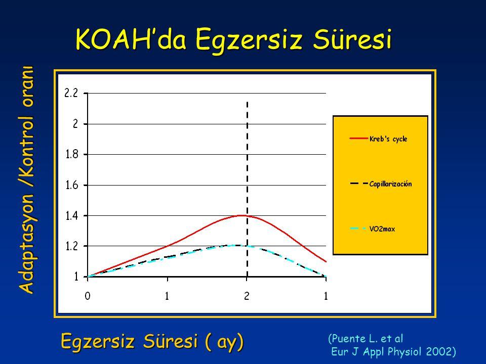 KOAH'da Egzersiz Süresi Adaptasyon /Kontrol oranı Egzersiz Süresi ( ay) (Puente L. et al Eur J Appl Physiol 2002)