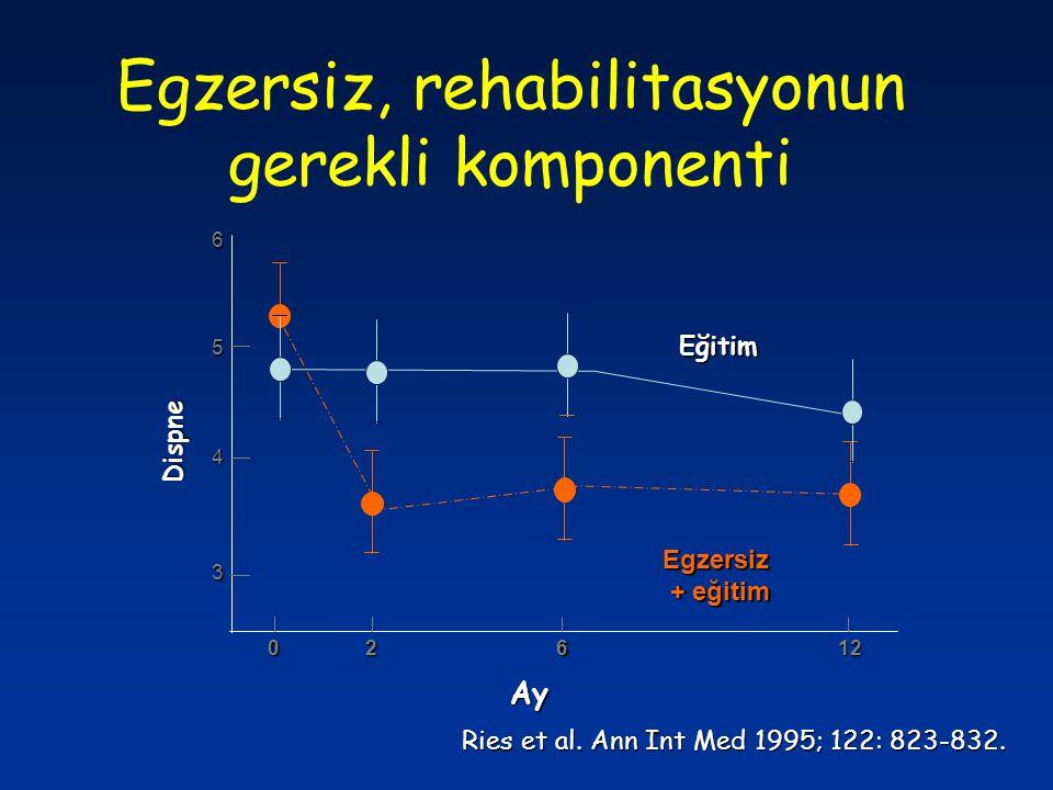 02612 Ay Dispne 3 4 5 6 Egzersiz + eğitim + eğitim Eğitim Ries et al. Ann Int Med 1995; 122: 823-832. Egzersiz, rehabilitasyonun gerekli komponenti