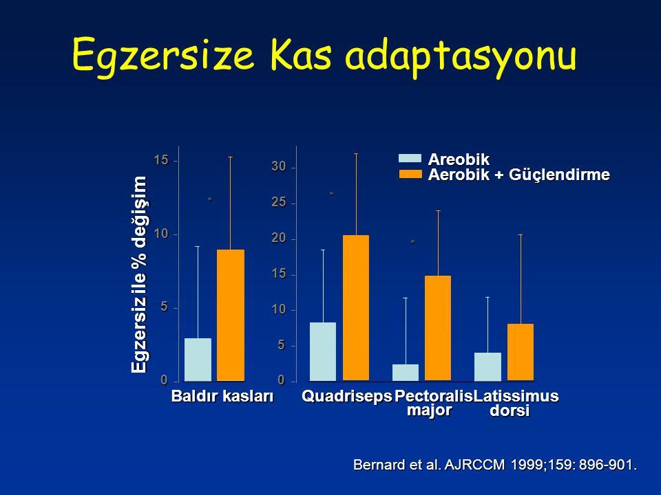 Baldır kasları Egzersiz ile % değişim 0 5 10 15 major dorsi Quadriseps PectoralisLatissimus 0 5 10 15 20 25 30 Areobik Aerobik + Güçlendirme * * * Egz