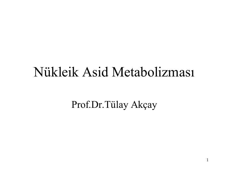 1 Nükleik Asid Metabolizması Prof.Dr.Tülay Akçay