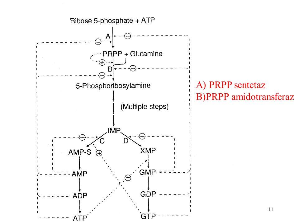 11 A) PRPP sentetaz B)PRPP amidotransferaz