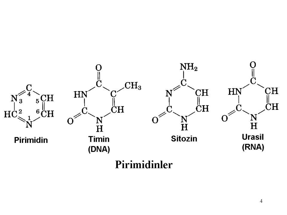 15 Pürin Nükleotidleri Metabolizma Bozuklukları I.