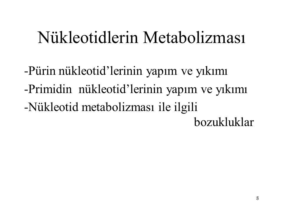 19 Pirimidin Metabolizmasının Bozuklukları Tip I : orotat fosforibozil transferaz ve orotidilat dekarboksilaz eksikliği; idrarla orotik asit atılmakta, gelişmede gerilik ve anemi görülmektedir.
