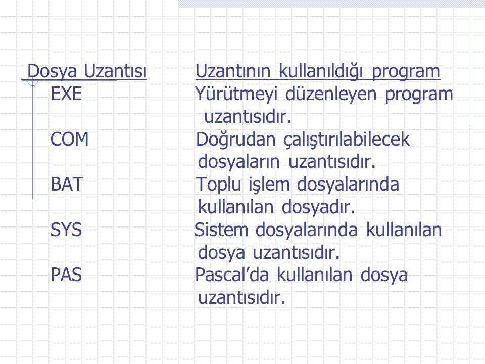 Dosya Uzantısı Uzantının kullanıldığı program BAS Basic'de kullanılan dosya uzantısıdır.