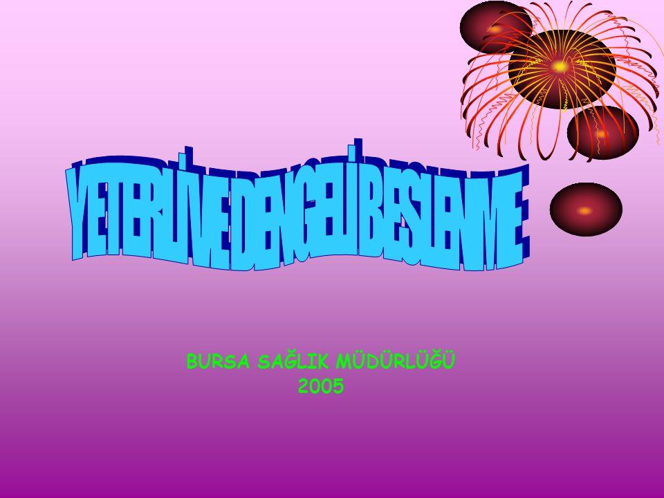 BURSA SAĞLIK MÜDÜRLÜĞÜ 2005