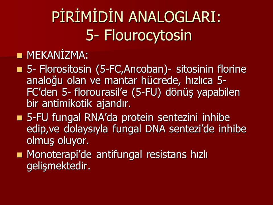 PİRİMİDİN ANALOGLARI: 5- Flourocytosin MEKANİZMA: MEKANİZMA: 5- Florositosin (5-FC,Ancoban)- sitosinin florine analoğu olan ve mantar hücrede, hızlıca 5- FC'den 5- florourasil'e (5-FU) dönüş yapabilen bir antimikotik ajandır.