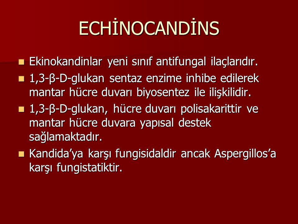 ECHİNOCANDİNS Ekinokandinlar yeni sınıf antifungal ilaçlarıdır. Ekinokandinlar yeni sınıf antifungal ilaçlarıdır. 1,3-β-D-glukan sentaz enzime inhibe