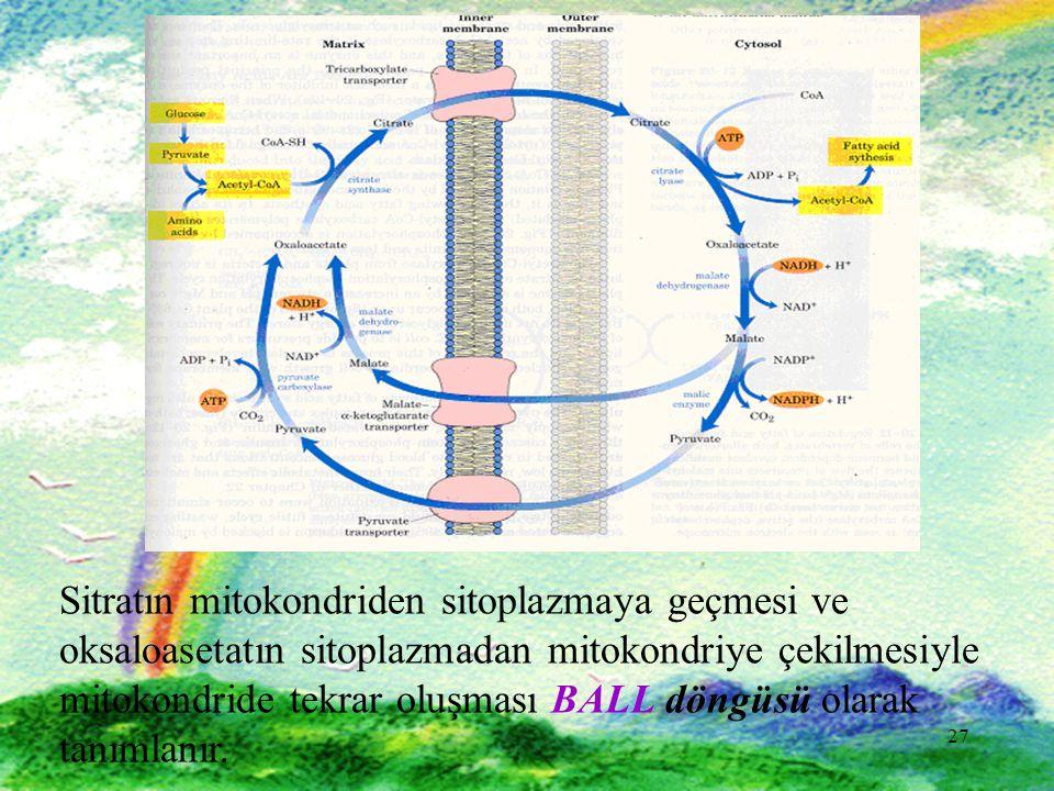 27 Sitratın mitokondriden sitoplazmaya geçmesi ve oksaloasetatın sitoplazmadan mitokondriye çekilmesiyle mitokondride tekrar oluşması BALL döngüsü olarak tanımlanır.