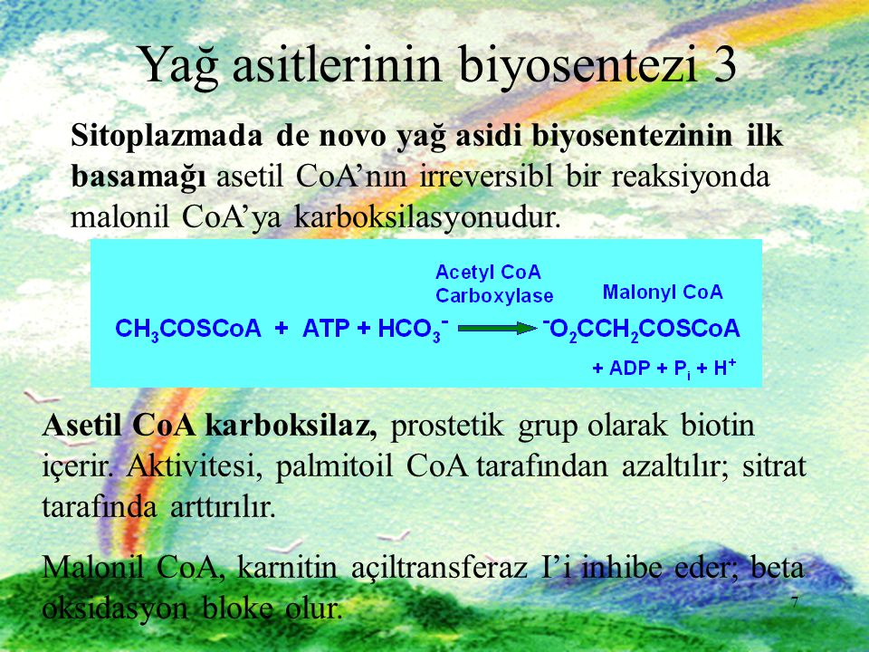 7 7 Yağ asitlerinin biyosentezi 3 Sitoplazmada de novo yağ asidi biyosentezinin ilk basamağı asetil CoA'nın irreversibl bir reaksiyonda malonil CoA'ya karboksilasyonudur.