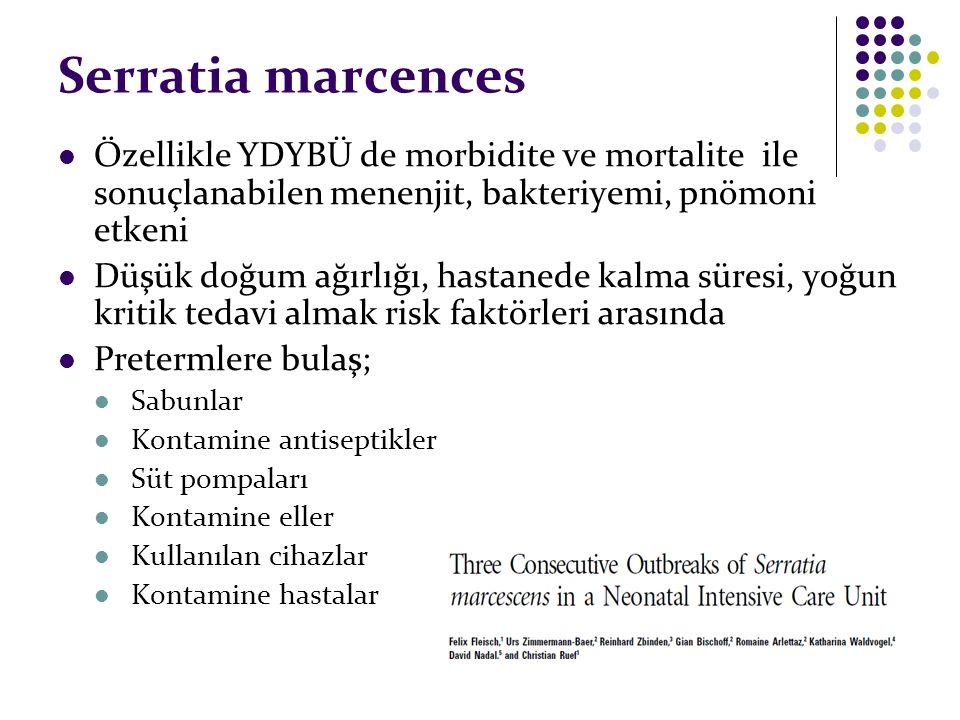 Serratia marcences Özellikle YDYBÜ de morbidite ve mortalite ile sonuçlanabilen menenjit, bakteriyemi, pnömoni etkeni Düşük doğum ağırlığı, hastanede kalma süresi, yoğun kritik tedavi almak risk faktörleri arasında Pretermlere bulaş; Sabunlar Kontamine antiseptikler Süt pompaları Kontamine eller Kullanılan cihazlar Kontamine hastalar