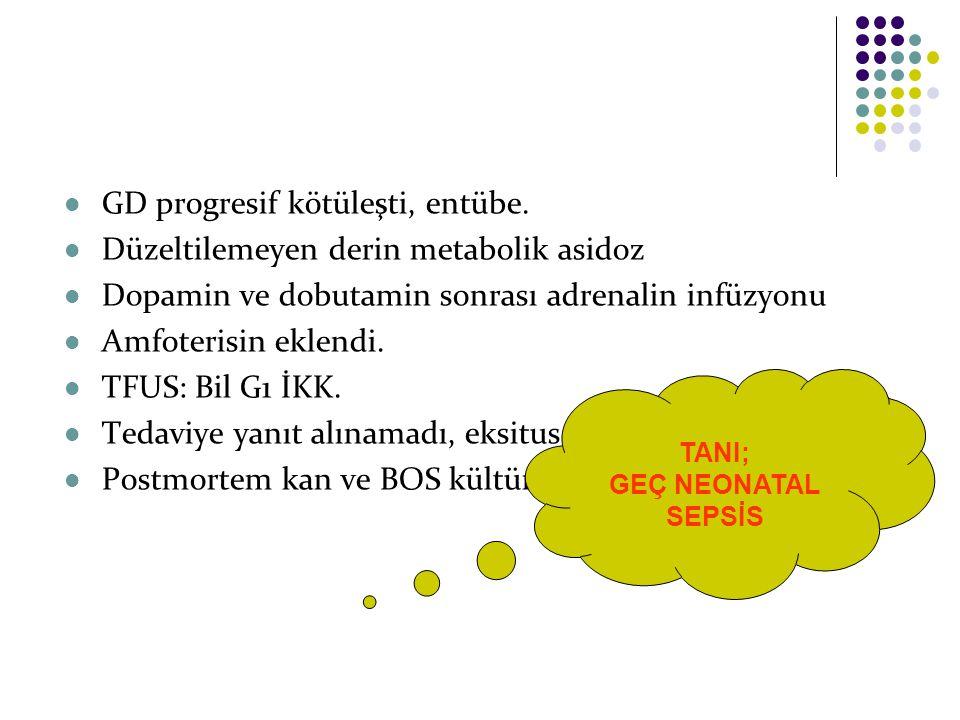 GD progresif kötüleşti, entübe. Düzeltilemeyen derin metabolik asidoz Dopamin ve dobutamin sonrası adrenalin infüzyonu Amfoterisin eklendi. TFUS: Bil