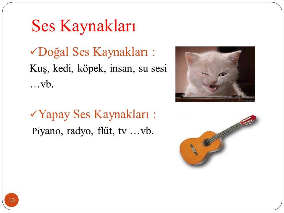 Ses Kaynakları Doğal Ses Kaynakları : Kuş, kedi, köpek, insan, su sesi …vb. Yapay Ses Kaynakları : Pi yano, radyo, flüt, tv …vb. 13