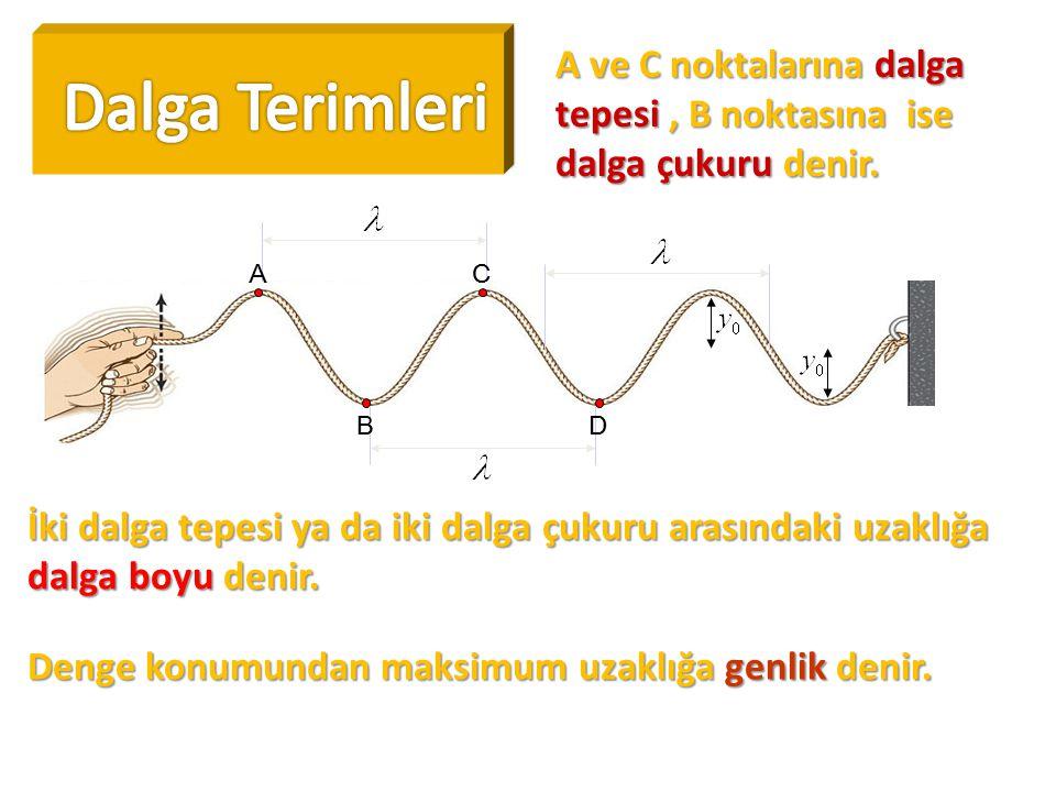 A ve C noktalarına dalga tepesi, B noktasına ise dalga çukuru denir. AC BD İki dalga tepesi ya da iki dalga çukuru arasındaki uzaklığa dalga boyu deni