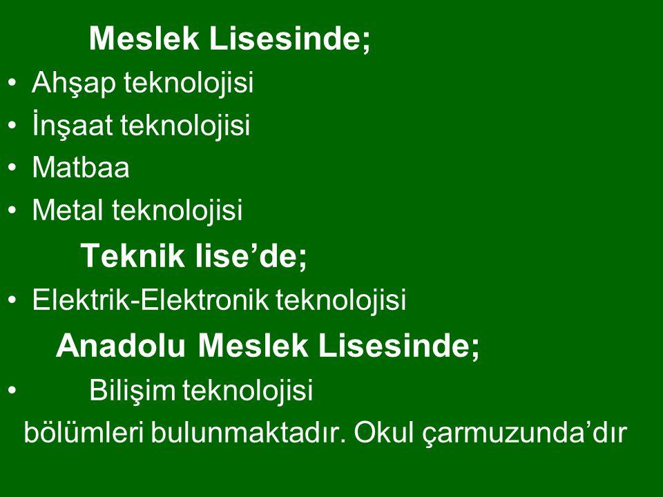 Meslek Lisesinde; Ahşap teknolojisi İnşaat teknolojisi Matbaa Metal teknolojisi Teknik lise'de; Elektrik-Elektronik teknolojisi Anadolu Meslek Lisesin
