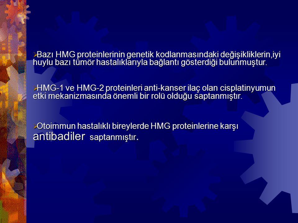  Bazı HMG proteinlerinin genetik kodlanmasındaki değişikliklerin,iyi huylu bazı tümör hastalıklarıyla bağlantı gösterdiği bulunmuştur.  HMG-1 ve HMG