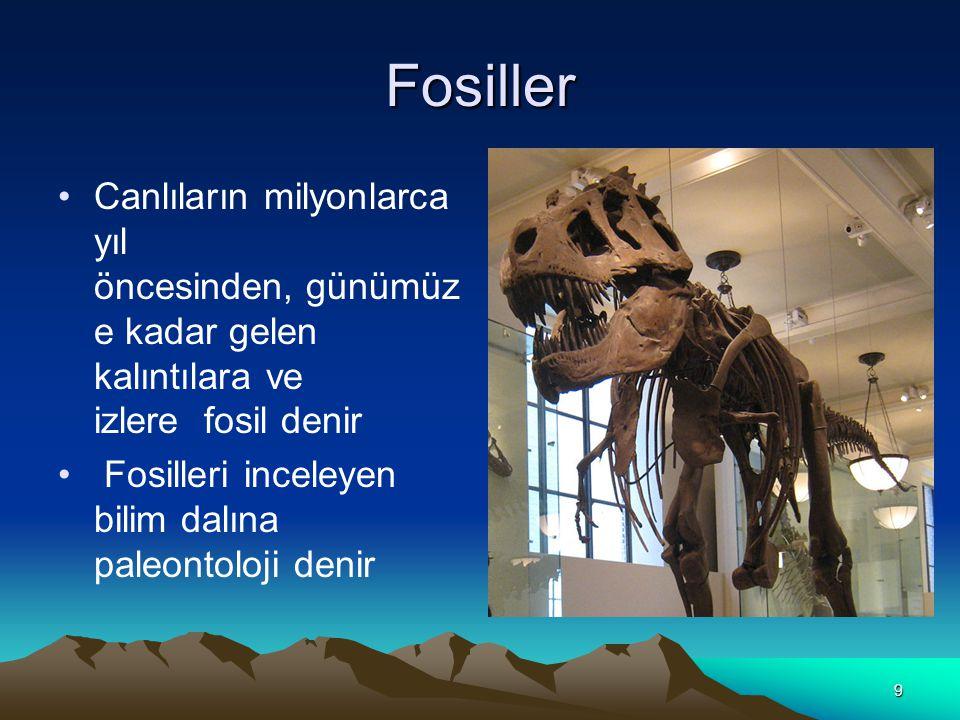 9 Fosiller Canlıların milyonlarca yıl öncesinden, günümüz e kadar gelen kalıntılara ve izlere fosil denir Fosilleri inceleyen bilim dalına paleontoloji denir.