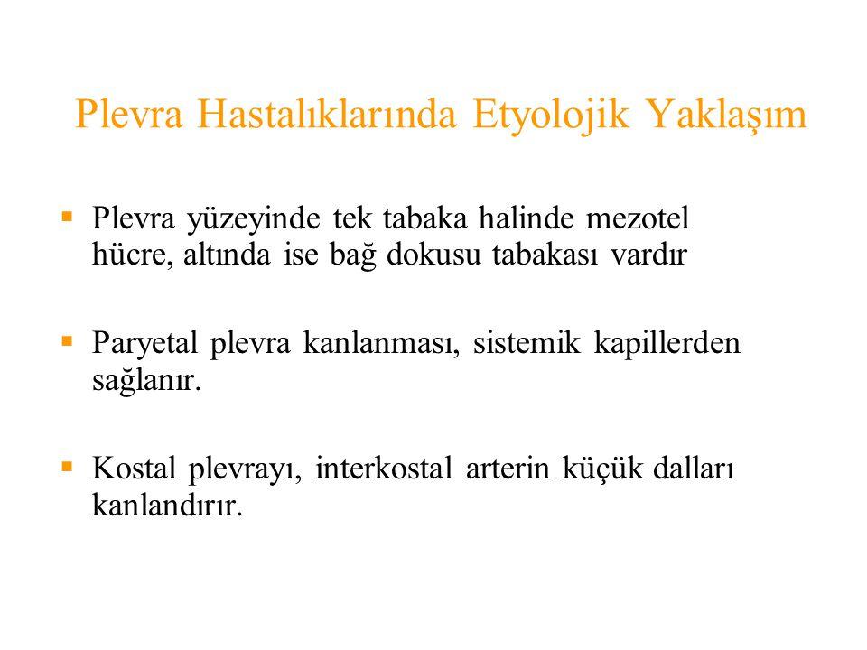 Plevra Hastalıklarında Etyolojik Yaklaşım EKSUDATİF PLEVRAL EFUZYONLAR  C.